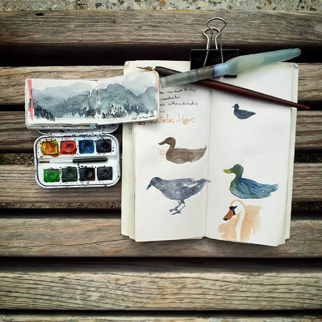 #sketchbook #swan #ducks #crow #lake #landscape #tinysketch #watercolor #travelanddraw #bledlake