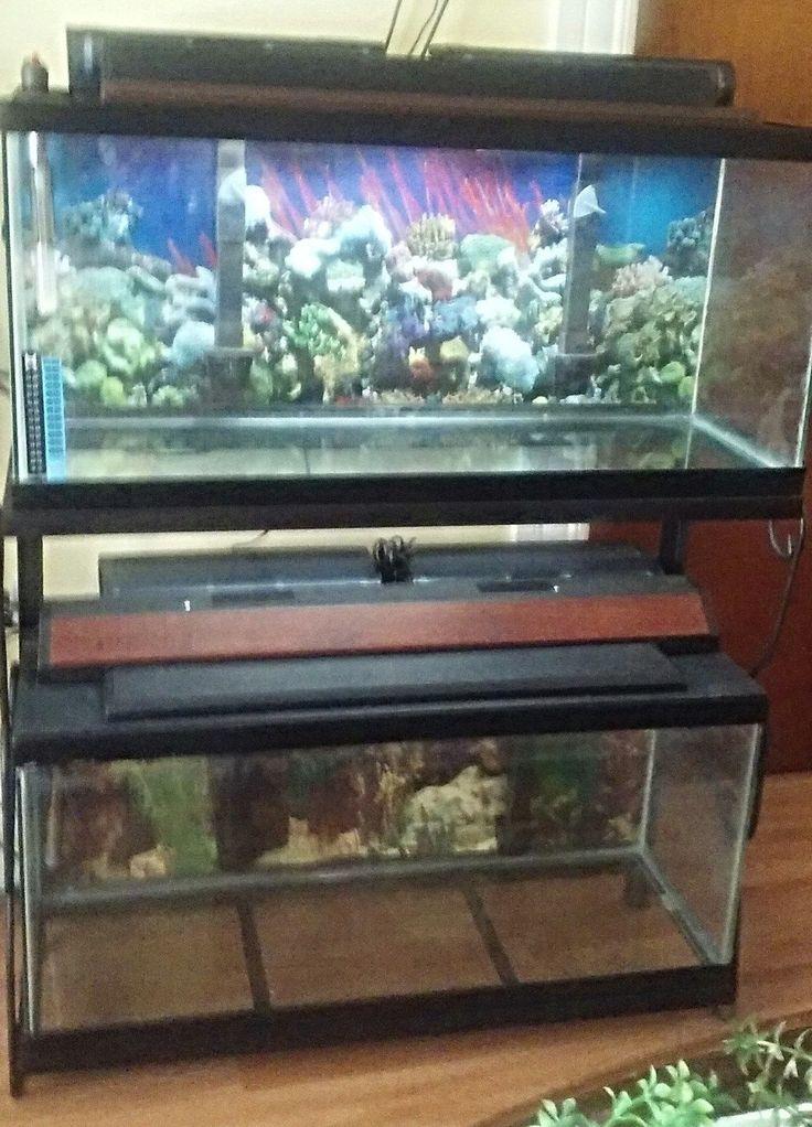 Best 25 30 gallon fish tank ideas on pinterest amazing for 30 gallon fish tank heater