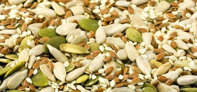 Pflanzliches Eiweiß: Diese Lebensmittel liefern viele Proteine (Foto © Pixabay / PublicDomainPictures)