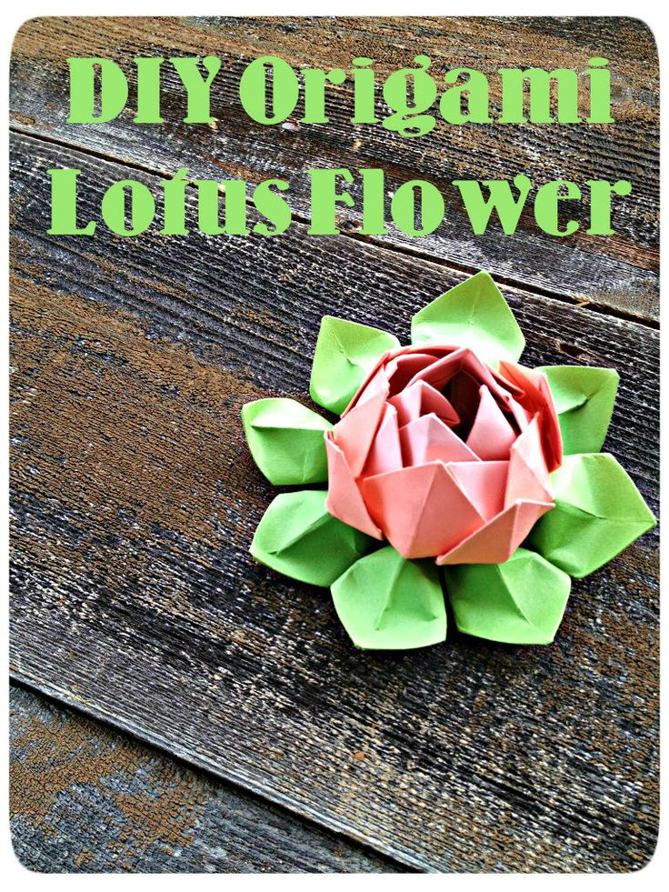 Easy Origami Lotus Flower Demo...you don't even have to use origami paper!