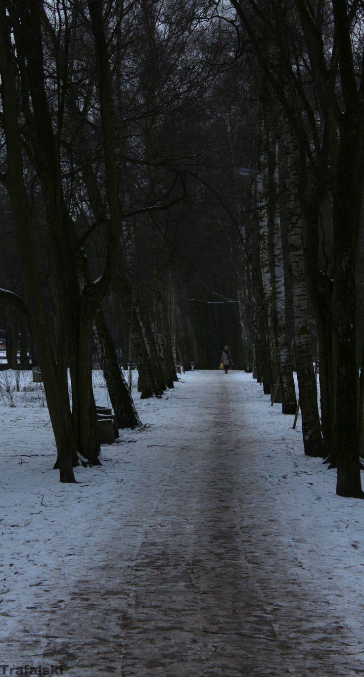 Wejherowo - Park Sztywny  #Wejherowo #park #Photography #ILovePhoto