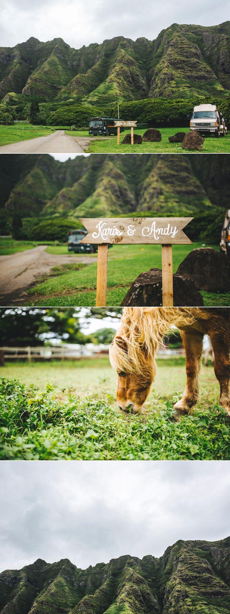Seeking Films | Kualoa Ranch: Paliku Gardens | Milestone Events Hawaii Wedding