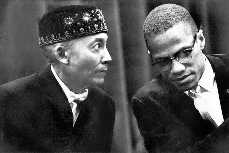 perceptions of malcolm x The malcolm x theory i didn't write this,  in the case of mixed race children, perceptions of illegitimacy were compounded by legal segregation in education,.