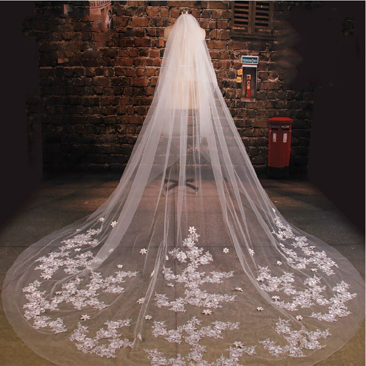 Cathedral Wedding Veil With Comb 3M Long Lace Mantilla Bridal Veil ...