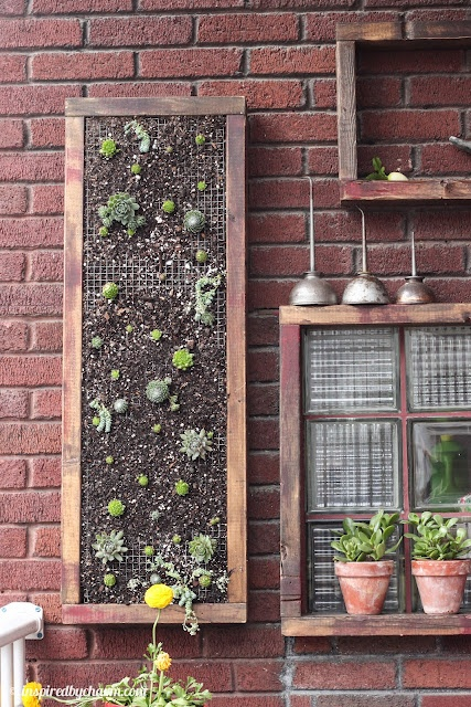 inspired by charm: How do you water that?  Vertical planter with hens and chicks created..super cute