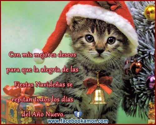 Mensajes de Navidad para Amigos | Tarjetas de Navidad