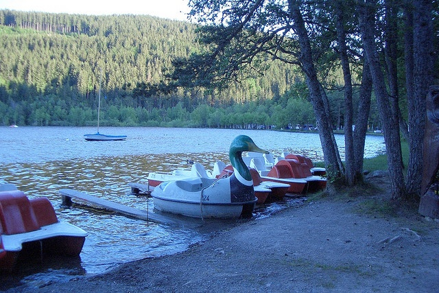 Duck Pedalo - Titisee in the Blackforest