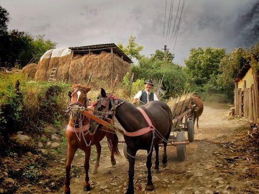 Rural Moment in Romania