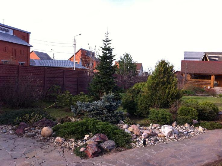 Сад. Подмосковье. Поздняя Осень.