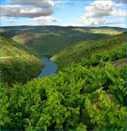 Ribeira Sacra, Galicia, Spain.