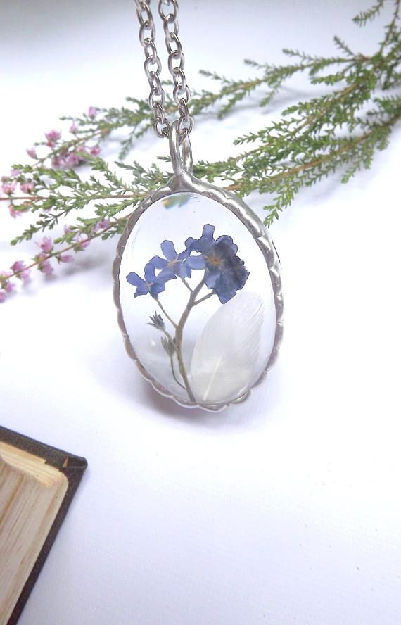 Forget-me-not. Forget me not and white feather. Dried flower