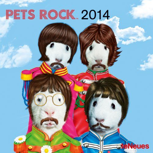 2014 Pets Rock Mini Wall Calendar by Takkoda http://smile.amazon.com/dp/3832765476/ref=cm_sw_r_pi_dp_YjqWvb02FWDV3