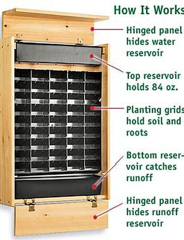 Living Wall Panel Indoor Planter buy Living Wall Gardener's Supply