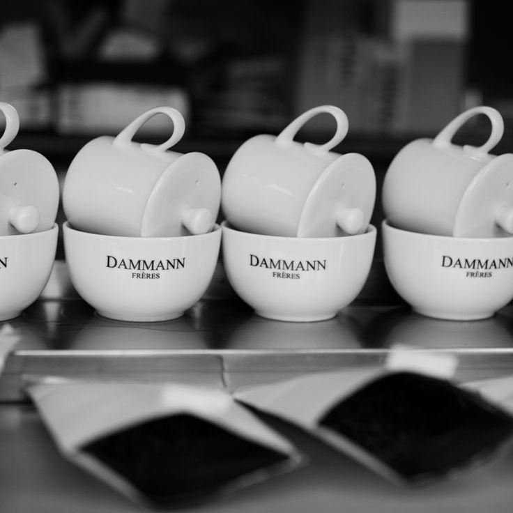[ Expertise ] Notre table & nos kits de dégustation Dammann Frères sont nos outils de travail indispensables.