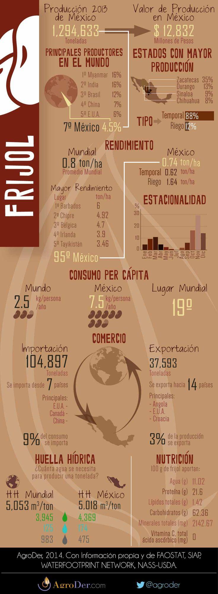 Infografía - Frijol en México, 2013.