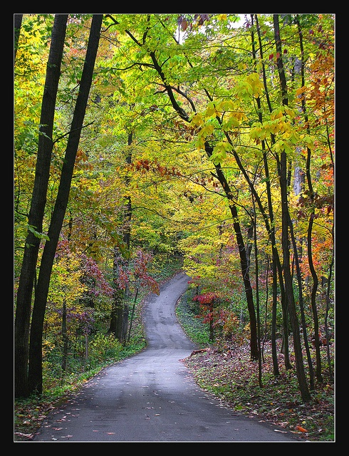 193 Best My Michigan Images On Pinterest