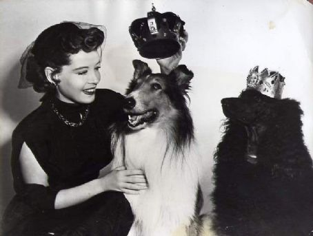 0 Gloria DeHaven with 2 dogs and crowns