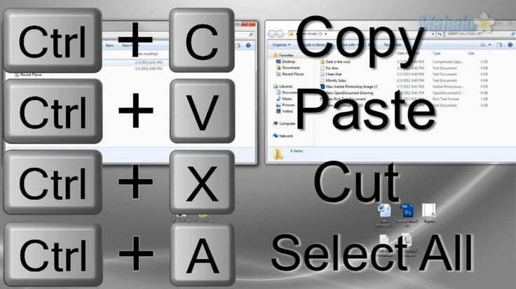 Keyboard shortcuts for copy and paste.