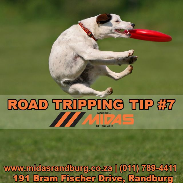 Road trip tip 7: Practice making new friends #Roadtripping http://bit.ly/1Lslm1F