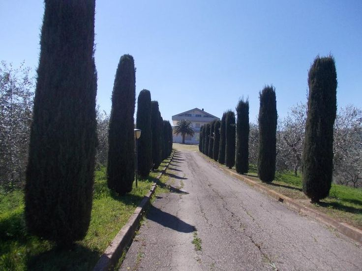 Villa immersed in the green hills of Pescara € 1.300.000.