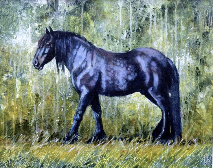 "Black Beauty 16 x 20"" acrylic"