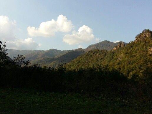 Adygea