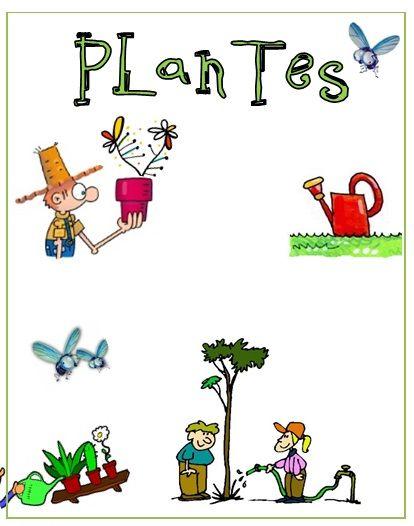 Càrrec plantes