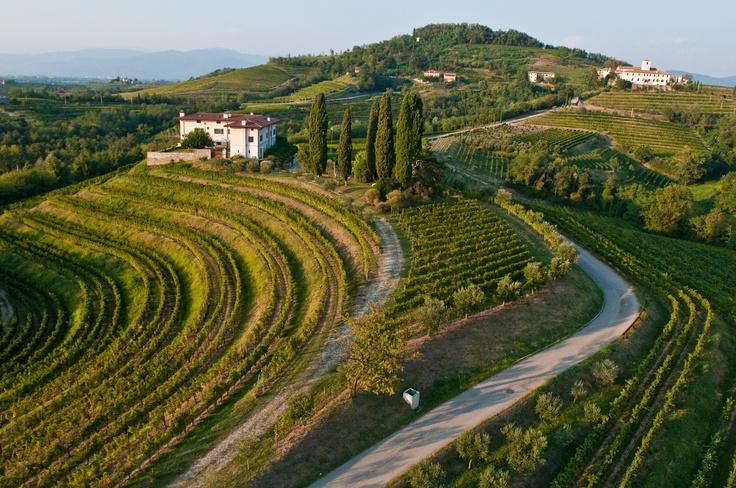 #Collio, Friuli Venezia Giulia, http://smart-travel.hr/en/holiday/agrotourism-ronchi-ro-collio/