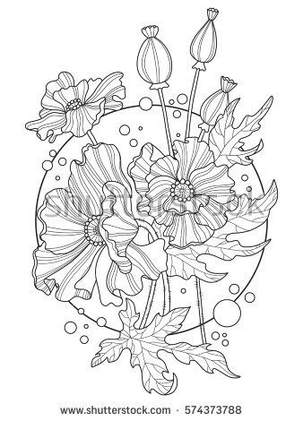 Poppy Flowers Coloring Book Vector Illustration Tattoo Stencil Black And White Lines Lace
