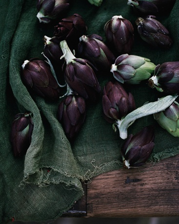artichokes. photo by con polous.