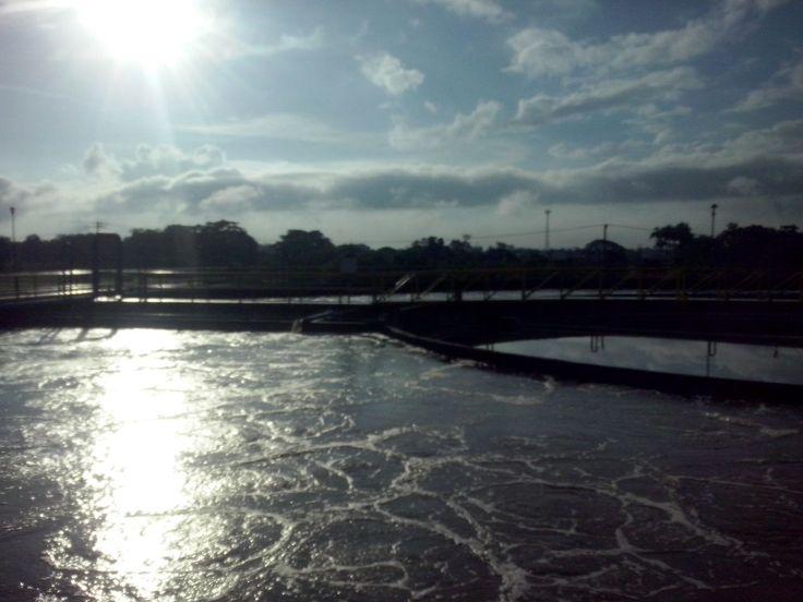 El agua tratada por Aclara, ¡El mejor beneficio para la siembra agrícola!