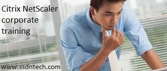 SSDN Technologies provide best Netscaler corporate training, certification training, in Delhi, Gurgaon, ahmedabad and India .