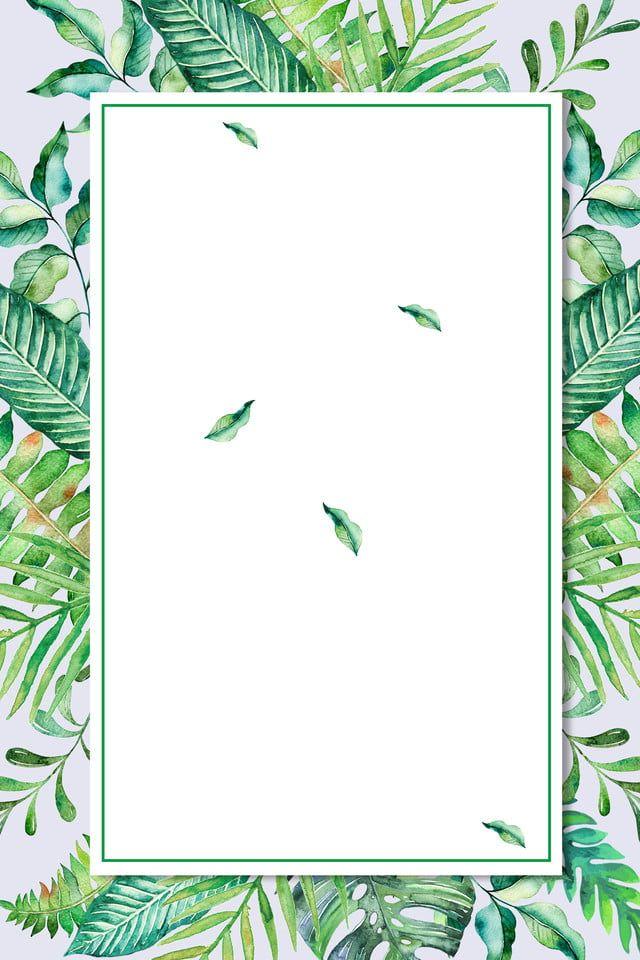 Baground Hijau Daun : baground, hijau, Green, Border, Product, Background, Kertas, Dinding,, Animasi
