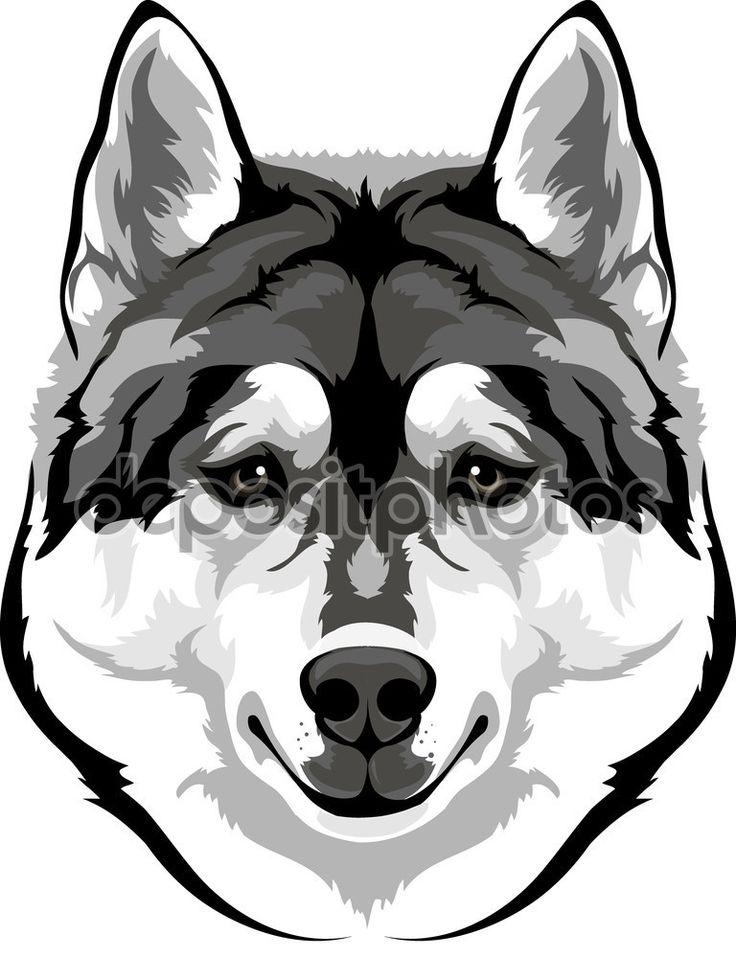 http://ru.depositphotos.com/vector-images/husky-dog-st240.html?qview=68548753
