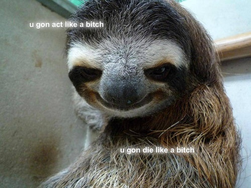 Creepy sloth whisper - photo#48