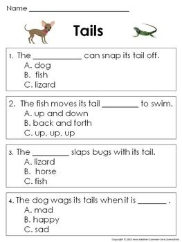 Reading Comprehension Worksheets and Passages for Guided R