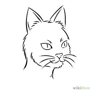 Ms de 25 ideas increbles sobre Cara de gato dibujo en Pinterest