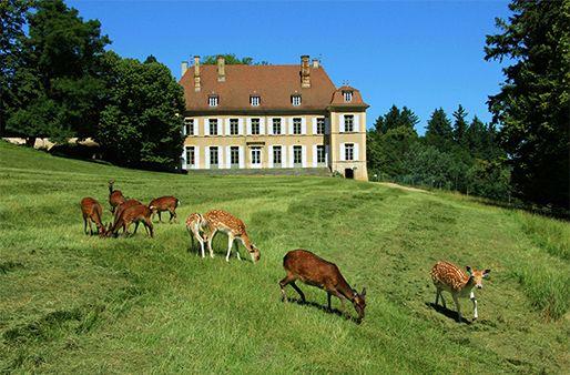 Château de Moidière, Bonnefamille (Isère - France)