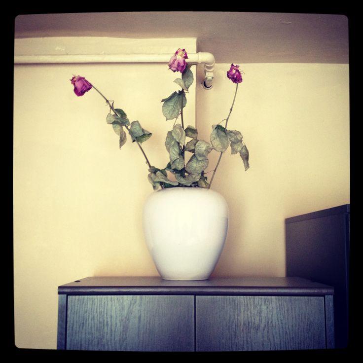 #roses #sweet #pink #keepsafe