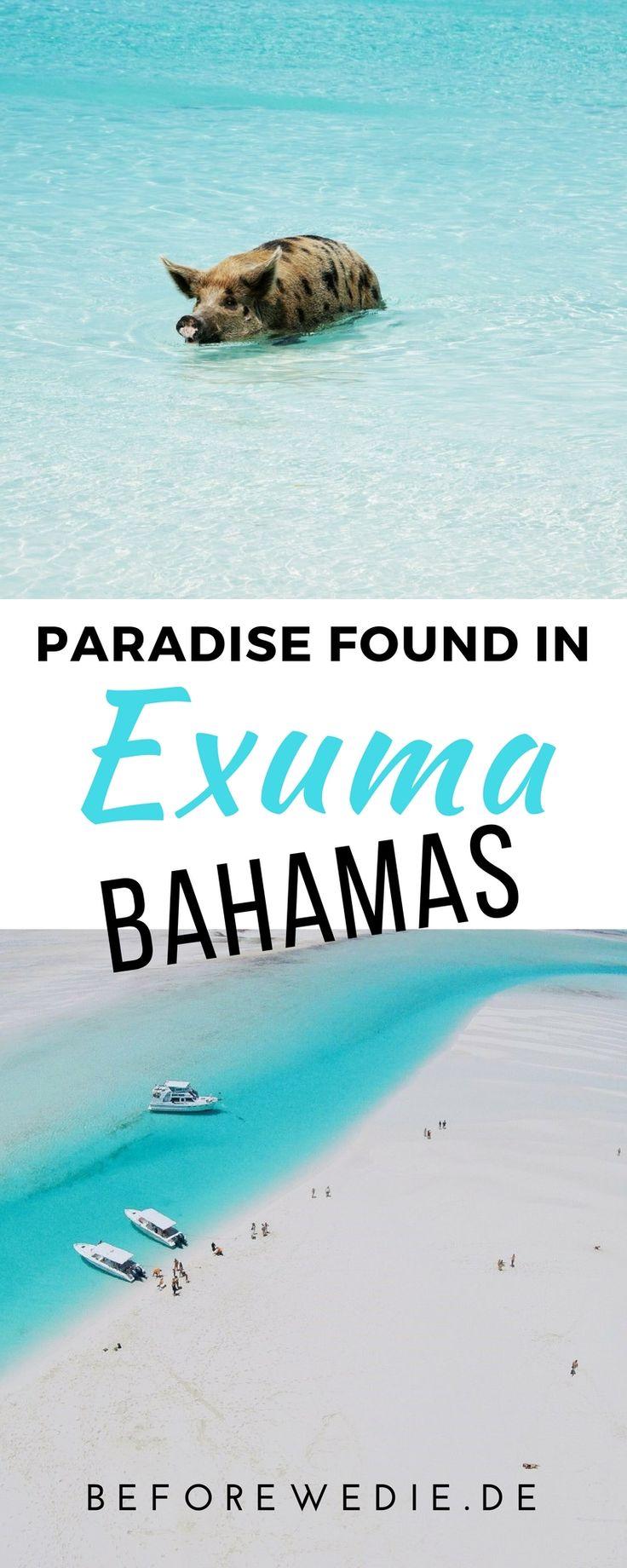 Exuma (Bahamas): Mit roten Leguanen und Streichel-Haien im Paradies
