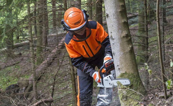 Wer einen größeren Baum fällen möchte, muss die Technik beherrschen und auch mit seinem Arbeitsgerät – der Motorsäge – umgehen können. Hier lesen Sie, wie Sie Bäume fachmännisch fällen und warum Sie einen Motorsägenschein haben sollten.