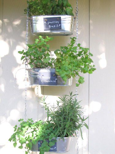 DIY Hanging Herb Garden {Tutorial}
