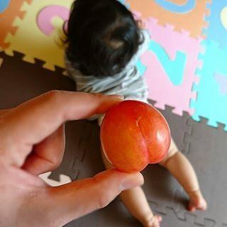 今しかできない!赤ちゃんの「ユニークな写真の撮り方」まとめ♡次なるブームは…!?の画像4
