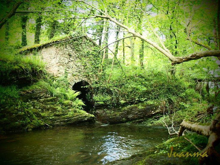 Molino en el rio Pisueña, Selaya #VallesPasiegos #Cantabria. Modelo de arquitectura civil pasiega.