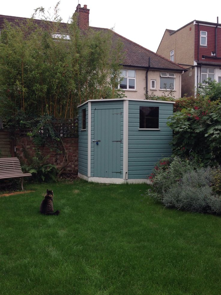 Our shed cuprinol garden shades in seagrass and pale for Seagrass landscaping