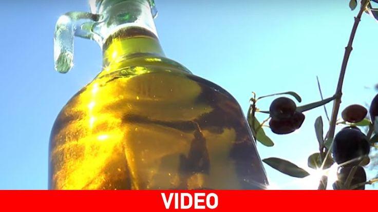 """Ελαιόλαδο: Ο """"χρυσός"""" της Κρήτης… που δε μετριέται σε καράτια"""