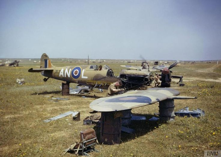THE DESERT AIR FORCE IN TUNISIA, SPRING 1943Supermarine Spitfire JG726/`AN-L' of No 417 Squadron, Royal Canadian Air Force being cannibalized for parts at Gabes. The aircraft was scrapped after colliding with a Hudson during take-off on 19 April 1943.