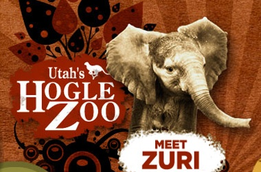 Hogle Zoo: 801-582-1631  Utah's Hogle Zoo is a Utah treasure. Located at the mouth of Emigration Canyon since 1931, the Zoo is one of the top visited attractions in the state of Utah and the number one paid tourist attraction in Salt Lake City. Spread out over 42 acres, it's natural hillside terrain and meandering tree-covered pathways enhance the visitor experience as you discover the wonders of the natural world.