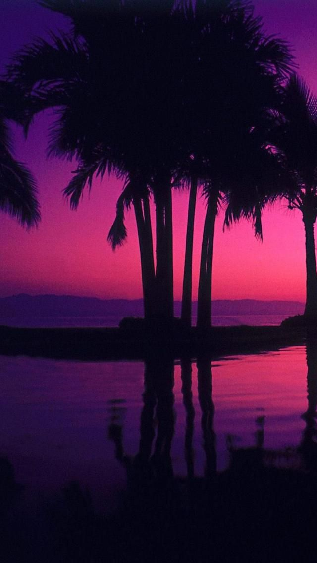 Dusk in Puerto Vallarta, Jalisco, Mexico >>> Wow the colors!