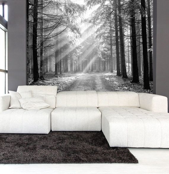 Wall Mural black and white of coniferous forest in the early morning, wall decal, repositionable peel & stick wall paper, wall covering